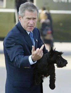 bush-finger.jpg