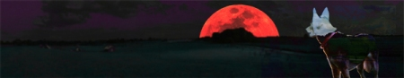 wolf red moon